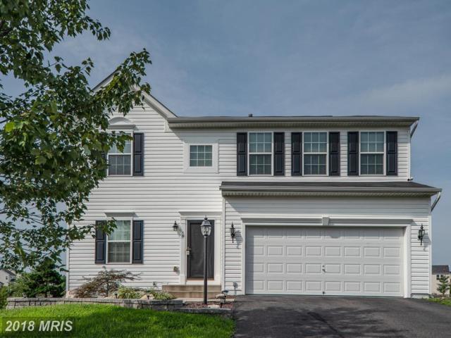 16 Wildwood Place, Fredericksburg, VA 22406 (#ST10331517) :: Keller Williams Pat Hiban Real Estate Group