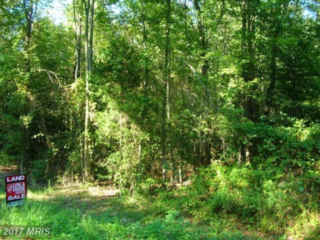 Morgan Lane, Fredericksburg, VA 22405 (#ST9655749) :: LoCoMusings