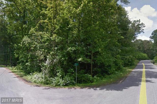 102 James Lane, Stafford, VA 22554 (#ST9820390) :: LoCoMusings