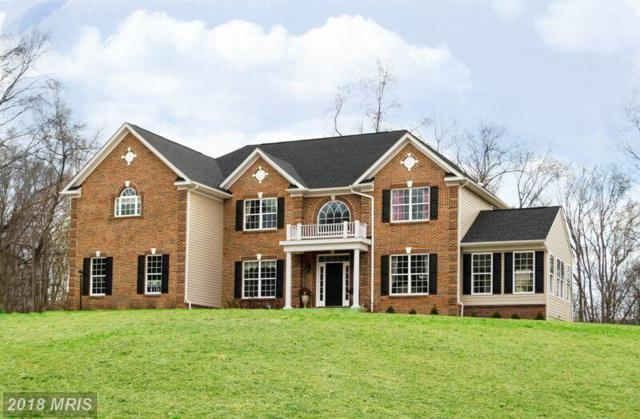 111 Camp Geary Lane, Stafford, VA 22554 (#ST9850064) :: Pearson Smith Realty