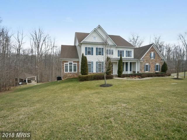 127 Stefaniga Farms Drive, Stafford, VA 22556 (#ST9861333) :: Pearson Smith Realty