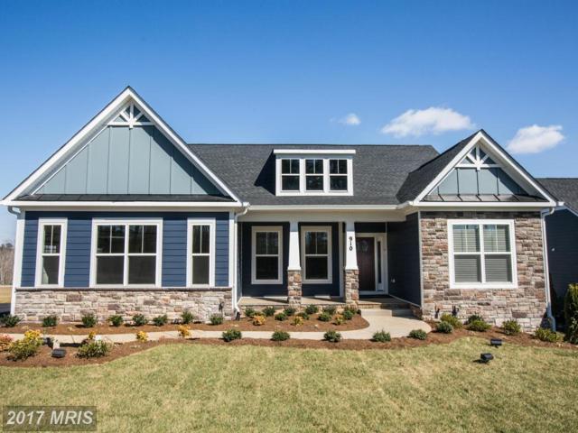 0 Cranes Bluff Court, Fredericksburg, VA 22405 (#ST9891342) :: Pearson Smith Realty