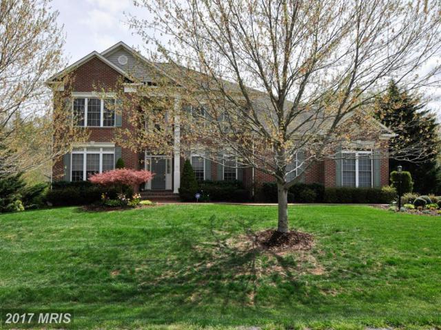 32 Kirby Lane, Stafford, VA 22554 (#ST9915848) :: LoCoMusings