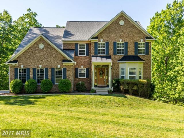 390 Gentle Breeze Circle, Fredericksburg, VA 22406 (#ST9937067) :: LoCoMusings