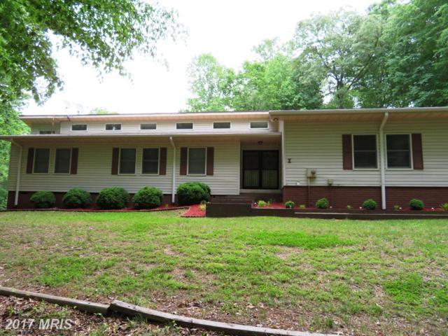 115 Meadows Road, Fredericksburg, VA 22406 (#ST9955213) :: Pearson Smith Realty