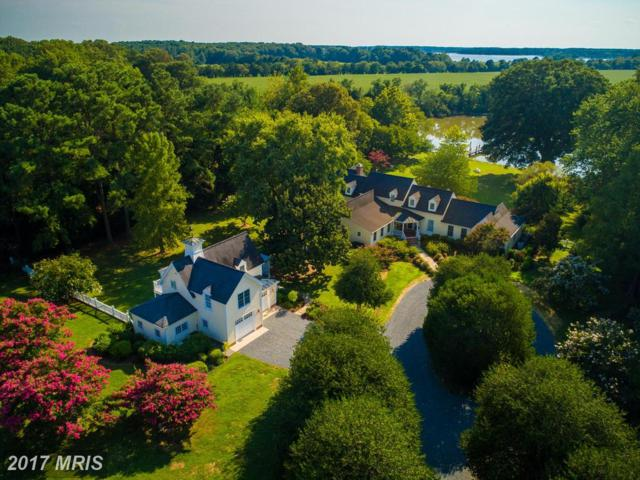 27505 Westpoint Road, Easton, MD 21601 (#TA10016100) :: Pearson Smith Realty