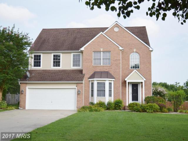8751 Mulberry Drive, Easton, MD 21601 (#TA10026709) :: Pearson Smith Realty