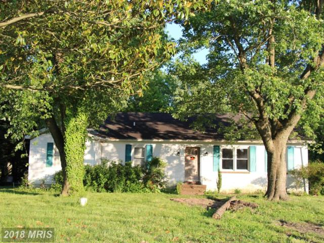 9745 Tilghman Island Road, Mcdaniel, MD 21647 (#TA10219838) :: The Maryland Group of Long & Foster
