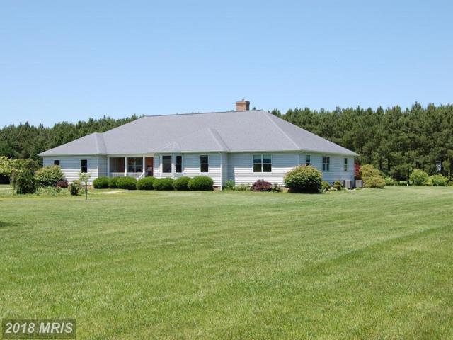 9070 Fox Meadow Lane, Easton, MD 21601 (#TA10268948) :: Bob Lucido Team of Keller Williams Integrity