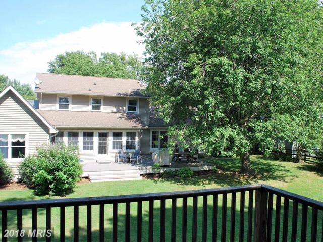 305 Bonfield Avenue, Oxford, MD 21654 (#TA10280111) :: Keller Williams Pat Hiban Real Estate Group