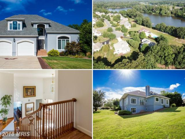 28531 Waterview Drive, Easton, MD 21601 (#TA10287676) :: RE/MAX Coast and Country