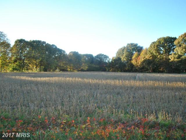 Gregory Road, Easton, MD 21601 (#TA9809815) :: LoCoMusings