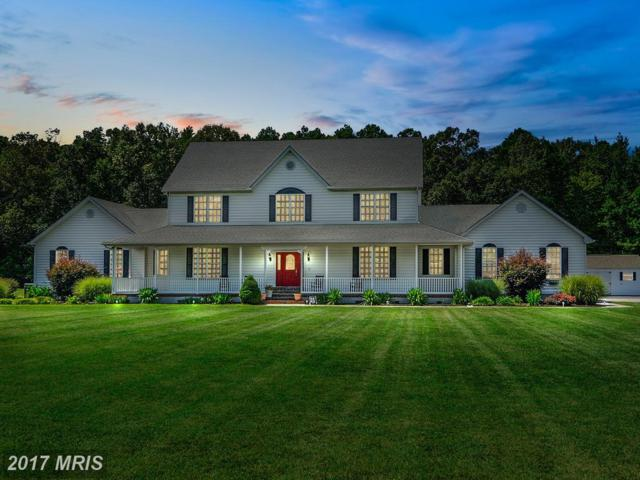 28474 Sanderstown Road, Trappe, MD 21673 (#TA9857804) :: Pearson Smith Realty