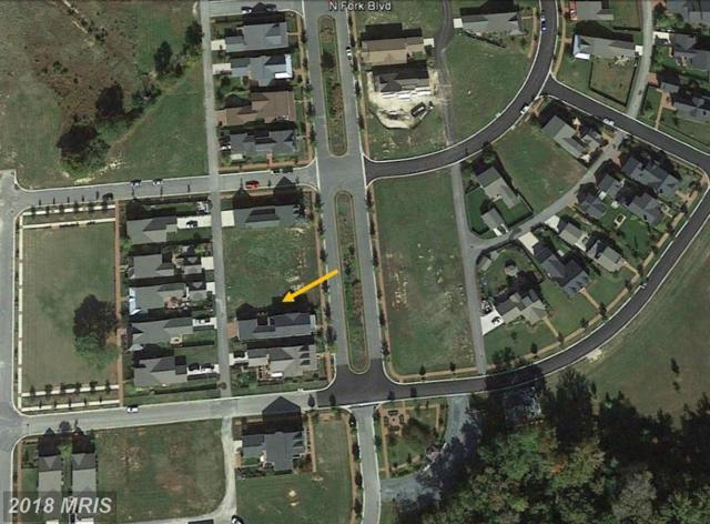 8058 Fork Boulevard, Easton, MD 21601 (#TA9860855) :: Pearson Smith Realty