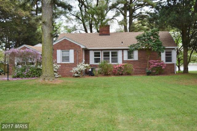 8997 Glebe Creek Road, Easton, MD 21601 (#TA9928838) :: Pearson Smith Realty