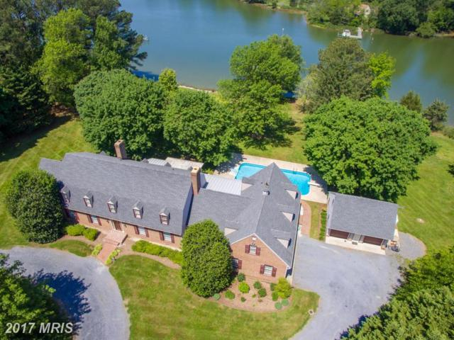 8240 Tricefield Road, Saint Michaels, MD 21663 (#TA9938065) :: Pearson Smith Realty