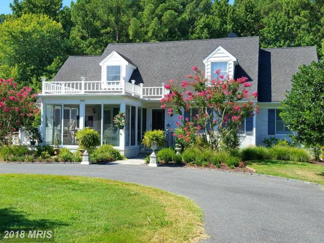 1008 Riverview Terrace, Saint Michaels, MD 21663 (MLS #TA9958981) :: RE/MAX Coast and Country