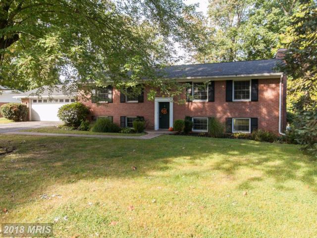 13016 Blue Ridge Road, Hagerstown, MD 21742 (#WA10077137) :: Pearson Smith Realty