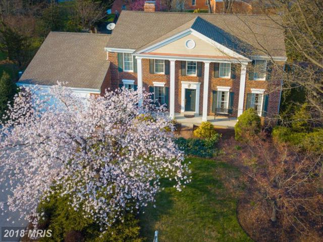 19632 Portsmouth Drive, Hagerstown, MD 21742 (#WA10216003) :: RE/MAX Executives