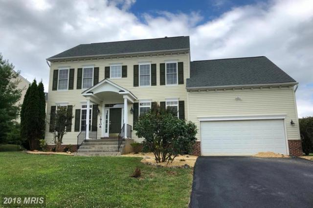 19106 Silver Maple Court, Hagerstown, MD 21742 (#WA10306097) :: Browning Homes Group
