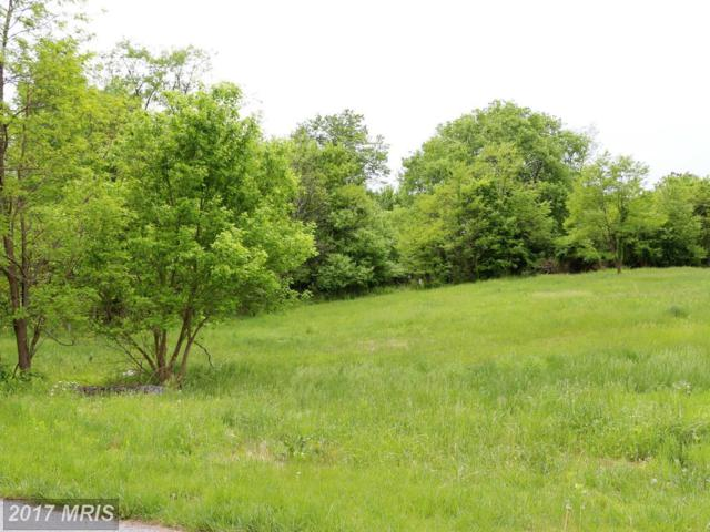 8320 Prophet Acres Road, Fairplay, MD 21733 (#WA9948256) :: Pearson Smith Realty