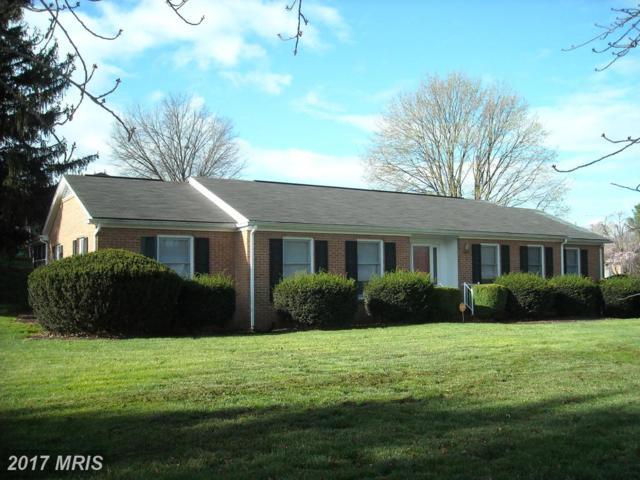 300 Marion Street, Winchester, VA 22601 (#WI9905162) :: LoCoMusings