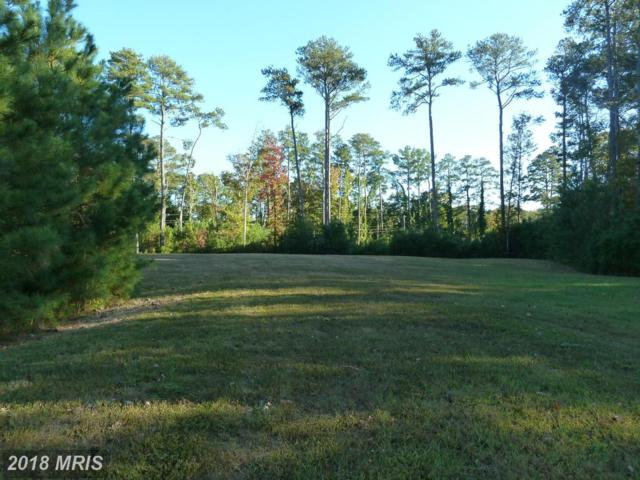 0 Admirals Lassie Lane, Berlin, MD 21811 (MLS #WO9974059) :: RE/MAX Coast and Country