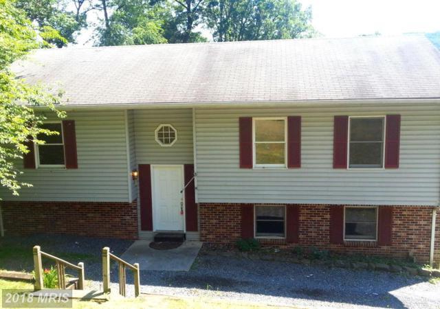 620 Golden Russet Drive, Linden, VA 22642 (#WR10228265) :: RE/MAX Gateway