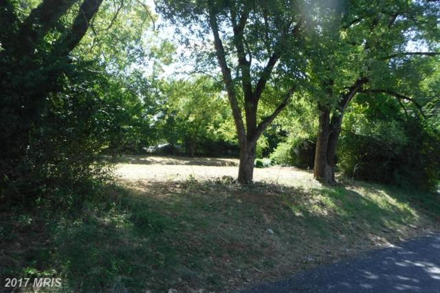 202 Criser Road E, Front Royal, VA 22630 (#WR9764718) :: LoCoMusings