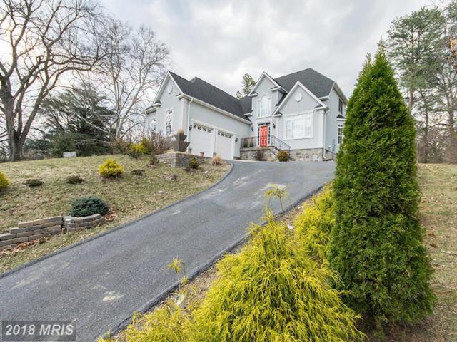 1399 Royal Avenue, Front Royal, VA 22630 (#WR9944830) :: Pearson Smith Realty