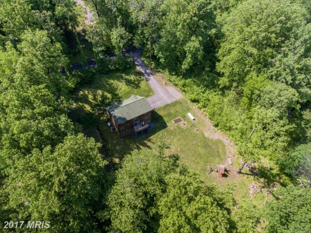 765 Northern Spy Drive, Linden, VA 22642 (#WR9951752) :: Pearson Smith Realty