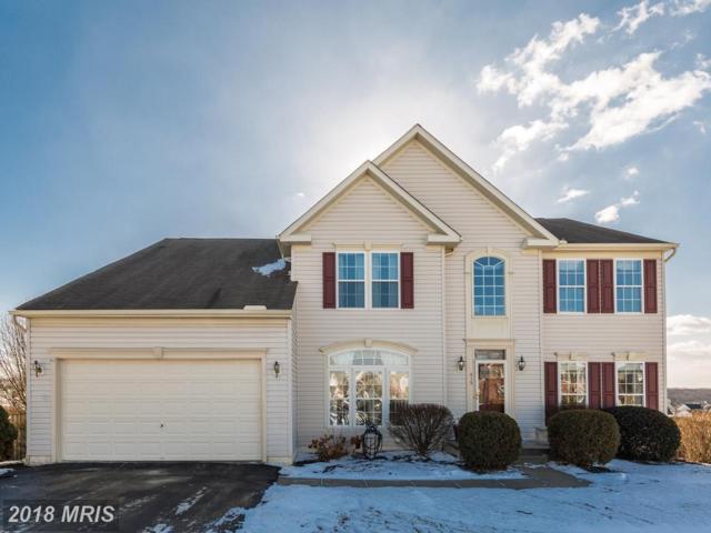415 El Vista Drive, Hanover, PA 17331 (#YK10128064) :: Pearson Smith Realty
