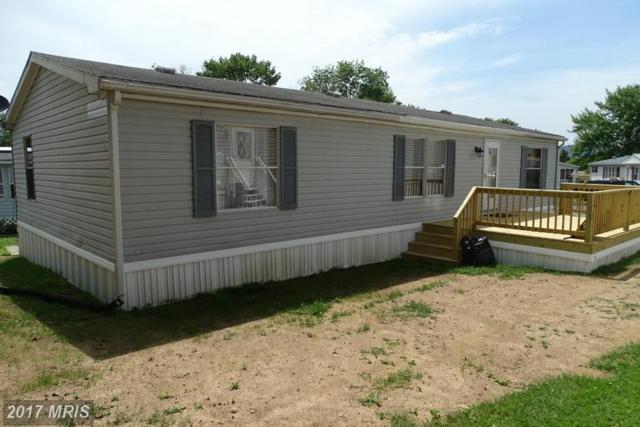 263 Beechwood Drive, Dillsburg, PA 17019 (#YK9708604) :: LoCoMusings