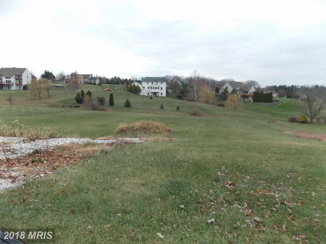 151 Eagle Ridge Court, Hanover, PA 17331 (#YK9953366) :: SURE Sales Group