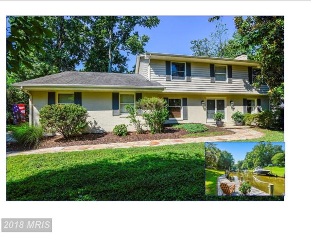 2104 Bay Front Terrace, Annapolis, MD 21409 (#AA10022310) :: Pearson Smith Realty