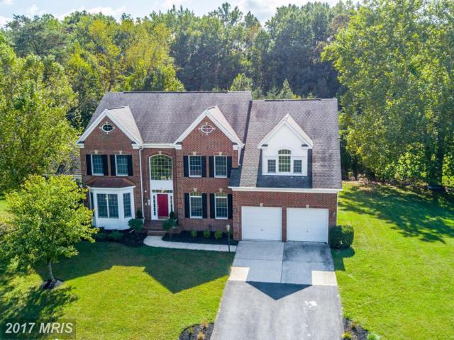 1009 Queen Annes Lace Way, Annapolis, MD 21401 (#AA10068425) :: Pearson Smith Realty