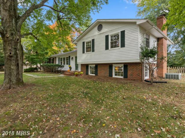 2103 Bay Front Terrace, Annapolis, MD 21409 (#AA10078550) :: Pearson Smith Realty