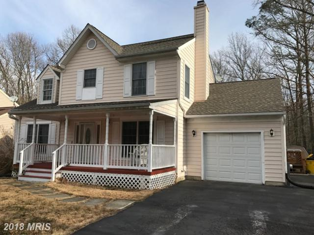5209 Hawk Channel Drive, West River, MD 20778 (#AA10083077) :: Pearson Smith Realty
