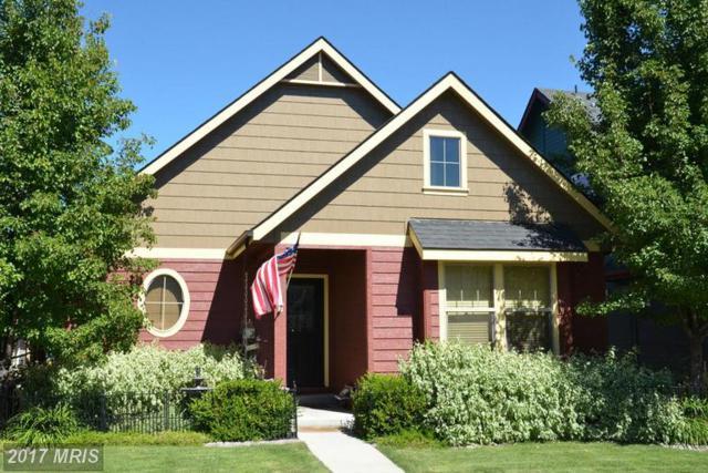 509 Brice Road, Pasadena, MD 21122 (#AA9660989) :: Pearson Smith Realty
