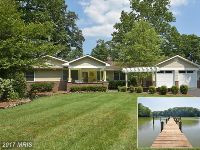 28 Wilelinor Drive, Edgewater, MD 21037 (#AA9982796) :: Pearson Smith Realty