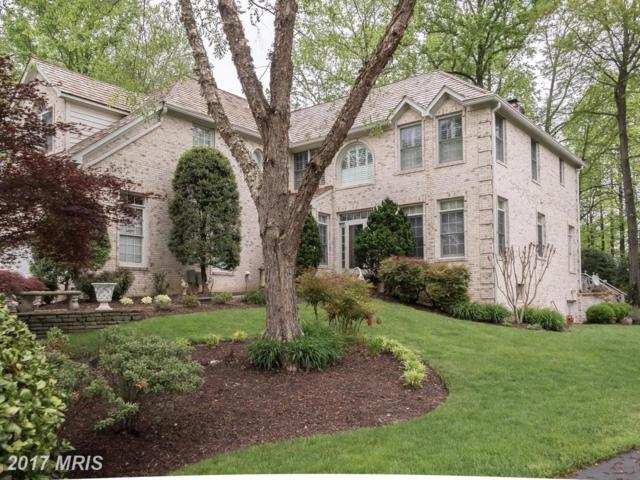160 South River Landing, Edgewater, MD 21037 (#AA9984091) :: Pearson Smith Realty