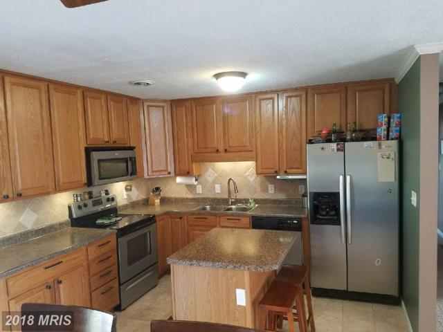 14131 Louise Drive SW, Cresaptown, MD 21502 (#AL10299732) :: Keller Williams Pat Hiban Real Estate Group