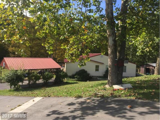 21800 Monte Notte Terrace, Flintstone, MD 21530 (#AL9792959) :: LoCoMusings