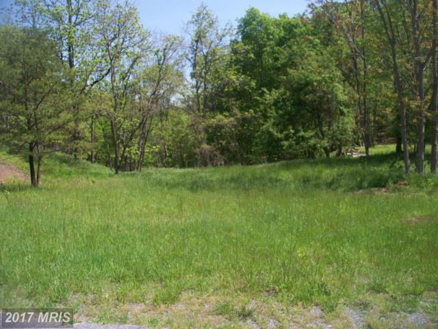 Malcolm Road, Oldtown, MD 21555 (#AL9798448) :: Pearson Smith Realty