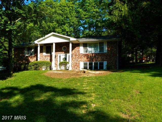 921 Growden Terrace, Cumberland, MD 21502 (#AL9871543) :: LoCoMusings