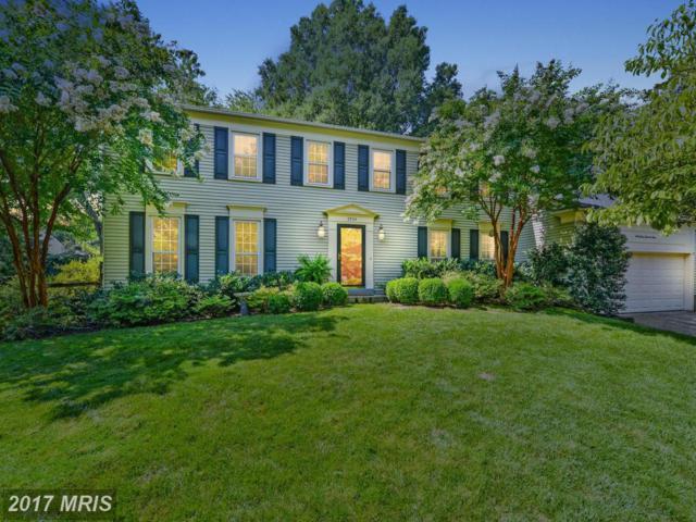3904 Terry Place, Alexandria, VA 22304 (#AX10016336) :: Pearson Smith Realty