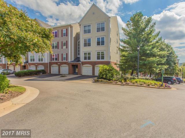 271 S. Pickett Street #301, Alexandria, VA 22304 (#AX10022375) :: Pearson Smith Realty