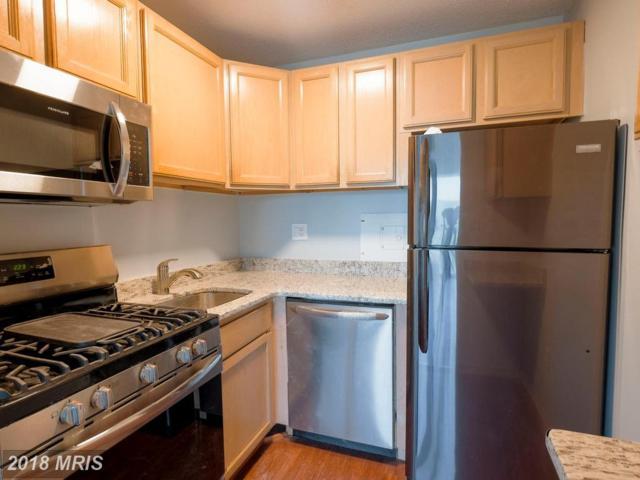 1225 Martha Custis Drive #1206, Alexandria, VA 22302 (#AX10169591) :: Dart Homes