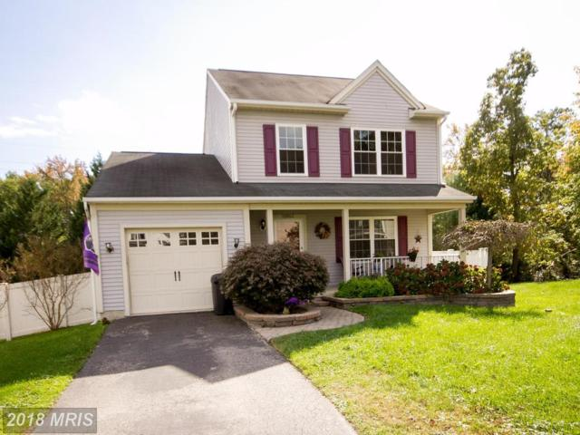 12803 Sand Dollar Way, Baltimore, MD 21220 (#BC10081399) :: Pearson Smith Realty
