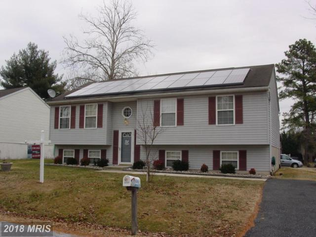 12911 Loyola Road, Baltimore, MD 21220 (#BC10122076) :: The Gus Anthony Team